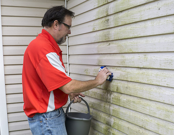 prevent moldy siding